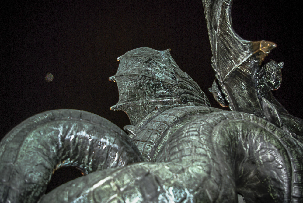 Griffon percé d'une balle sur la place St Michel par Julien Barret