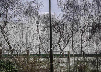 lampadaire allumé en plein jour à Boulogne ©J Barret
