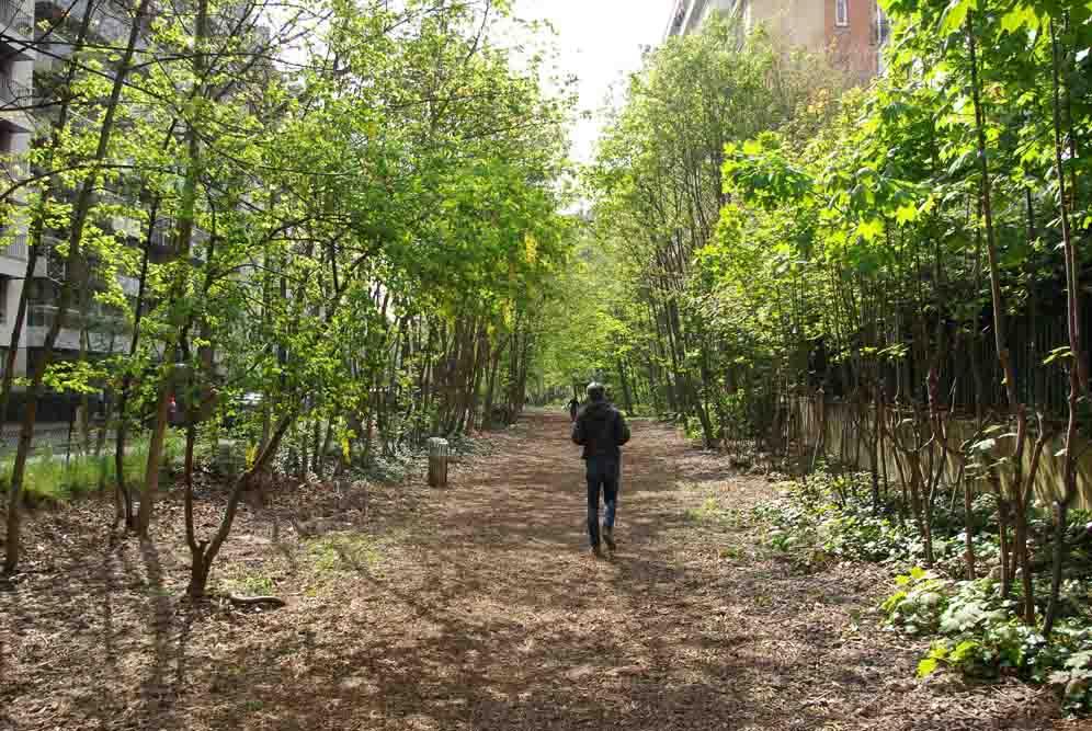 A la découverte du Sentier Nature du 16e arrondissement