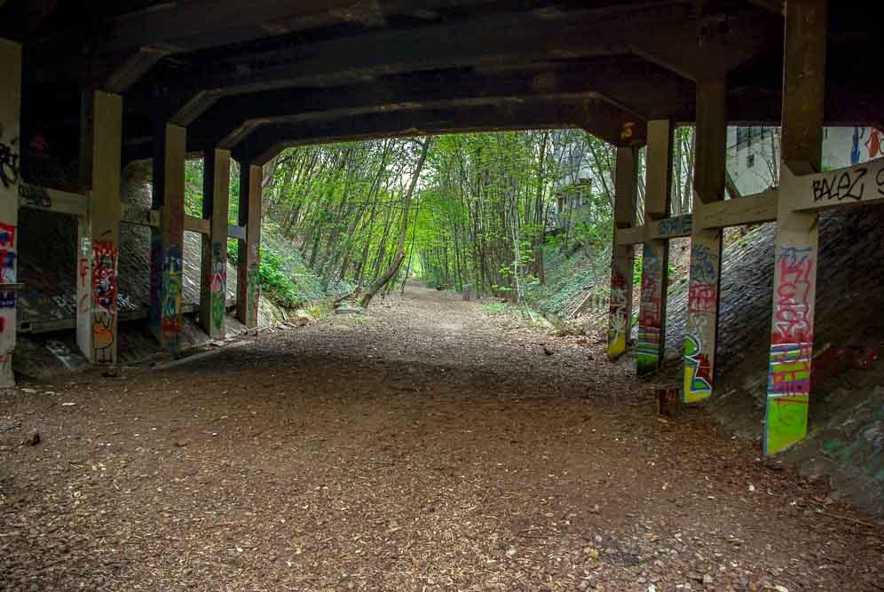Reportage sur le Sentier Nature de la Petite Ceinture du 16e parJ.Barret-20